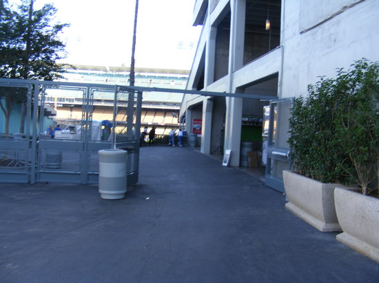 open field level gate.JPG