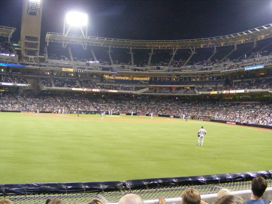 view from seats lf.JPG