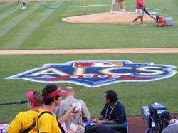 alcs logo on field.JPG