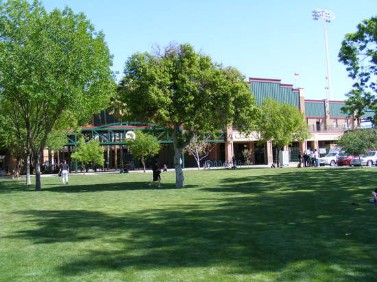 lawn near home plate gate.JPG