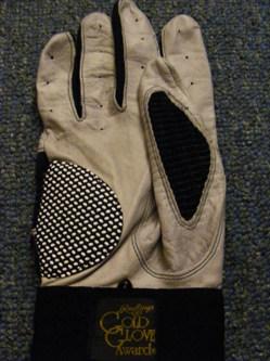 piazza glove 1.JPG