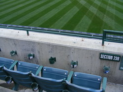 where i caught the first ball 3.27.JPG